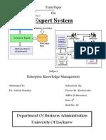 Expert Systems Characteristics