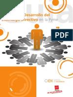 Guia para el desarrollo del Liderazgo Directivo en la Pyme