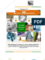 Financing methodolgy - credit managemant project