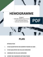 Présentation Hémogramme TL Grp 2