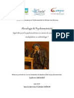 Alcoologie Et Psychomotricite Quel Role