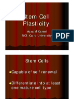 Stem%20Cell%20Plasticity