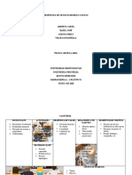 Propuesta de Negocio Modelo Canvas
