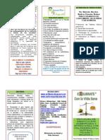 Copia de TRÍPTICO DEL PROGRAMA EQUILIBRATE