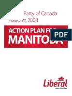 Liberal Platform (2008)