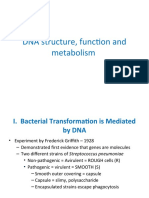 Lec 3. DNA structure, function and metabolism