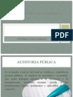 AUDITORIA PÚBLICA O GUBERNAMENTAL