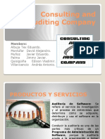 Consulting_and_Auditing_Company