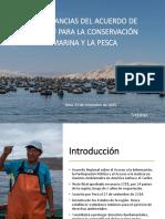 escazu_sector_pesquero_oceana_s.ex.29.09.20