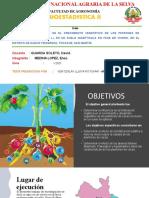 Fertilización Orgánica en El Crecimiento Vegetativo- 1