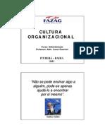 Cultura Organizacional - Aula 01 - Prof. LG
