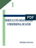 (Tânia Regina Corrêa de Souza) Morte e Luto - Desafios para o profissional de saúde (PPT)