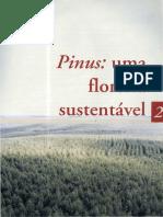 02 Pinus Uma Floresta Sustentavel
