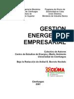 Libro Gestión Energética Empresarial