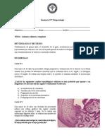 SEMINARIO 2 fisiopatologia