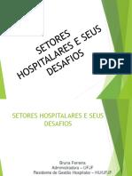 Setores Hospitalares e Seus Desafios