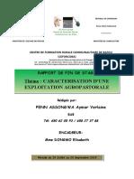 RAPPORT DE STAGE DE PENN Verlaine