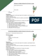Guías de experimentos 1_unidad