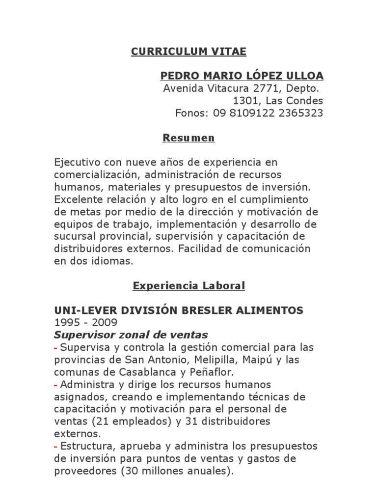 Perfecto Curriculum Resumen Ejecutivo Molde - Colección De ...