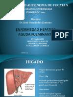 ENFERMEDAD_HEPATICA_AGUDA_FULMINANTE