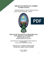 MERCADO DE TRABAJO DE LOS PROFESIONALES TITULADOS DE LA UNIVERSIDAD PÚBLICA DE EL ALTO