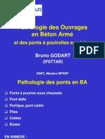Pathologie_BA_16