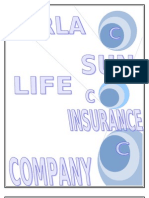 birla sunlife insurance