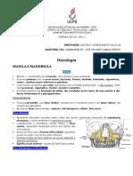 Osteologia - Maxila e Mandíbula 2021.1