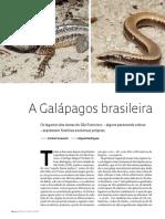 94-97_lagartos
