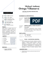 67 Curriculum Vitae Puro