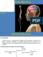 1 Organização Do Sistema Nervoso