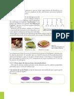 02 - Cap. 1 - La química en los alimentos - Parte 2
