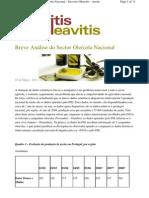 Breve Análise do Sector Oleícola Nacional