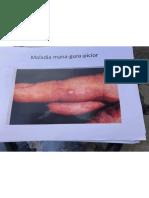 MO poze test 1