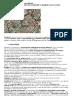 comentarioplanourbano-100424111001-phpapp02