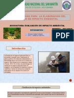 METODOLOGIAS PARA  LA ELABORACION DEL ESTUDIO DE IMPACTO AMBIENTAL