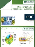 CT 2 Microorganismos procariotas- eucariotas