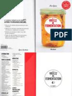Précis de Fermentation by Fern Green
