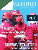 sdb-1-2010