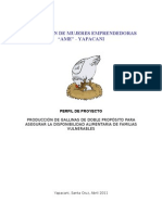 Perfil proyecto productivo AME