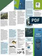 Bund.net Meeresschutz Aquakultur Faltblatt