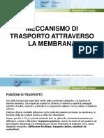 MECCANISMO DI TRASPORTO ATTRAVERSO LA MEMBRANA