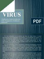 VIRUS (presentación)