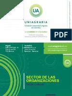 Presentacion organizaciones