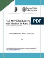 Berloffa Velásquez Reporte 2006