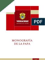MONOGRAFA DE PAPA