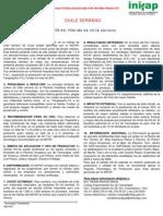 HS-44 HÍBRIDO DE CHILE SERRANO
