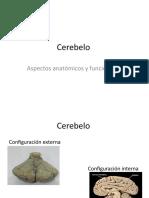 Cerebelo UASD PPT