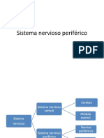 SISTEMA NERVIOSO PERIFERICO UASD PPT