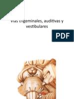 Vias trigeminal, auditiva y vestibular UASD PPT